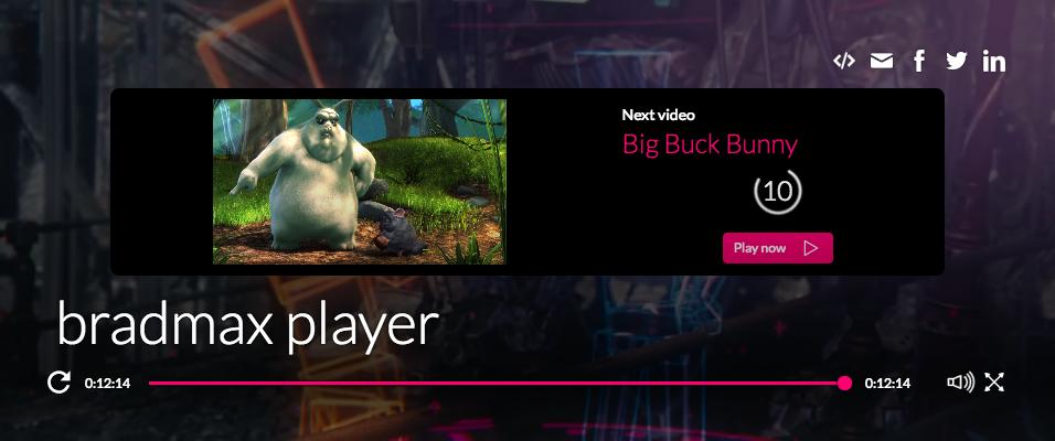 Bradmax Ltd  | Player